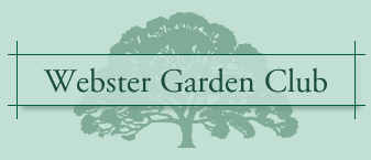 Webster Garden Club